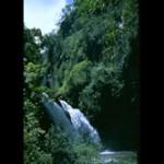 Tours Maui