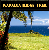 Kapalua ridge trek tour