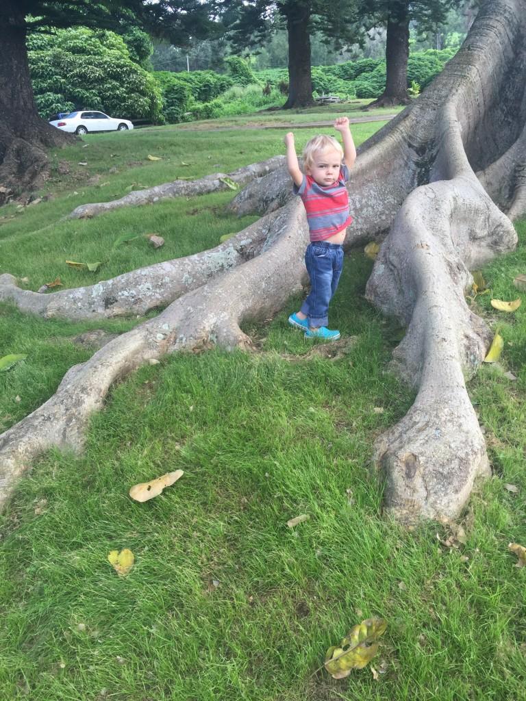 Bonus shot-- even little ones can enjoy exploring the beautiful, emerald-green grounds!