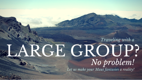 Large Group Tours in Maui