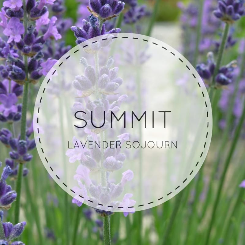 Summit Lavender Sojourn
