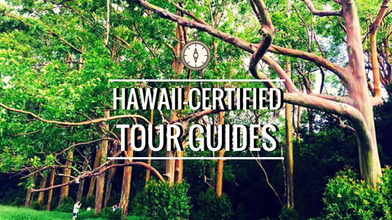• Our hawaii-certified tour guides •