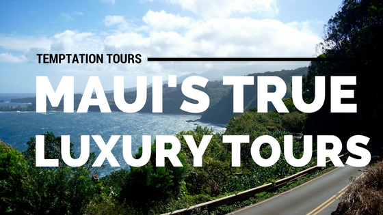 maui luxury tours